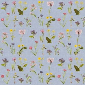 Wildflower Antiquities, Faded Chambray