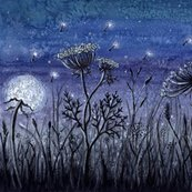 Nightgrasses1b_shop_thumb