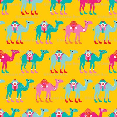 Colorful arabic summer oriental desert Camel parade