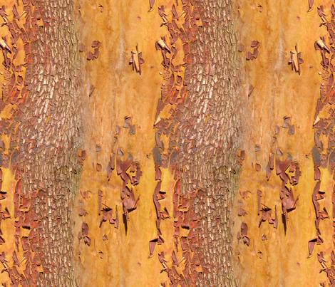 Arbutus or Madrona Bark fabric by koalalady on Spoonflower - custom fabric