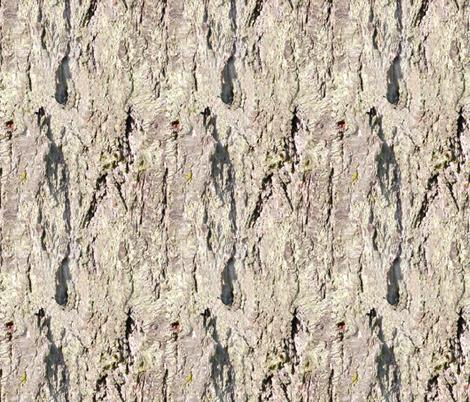Bark 4_ fabric by koalalady on Spoonflower - custom fabric