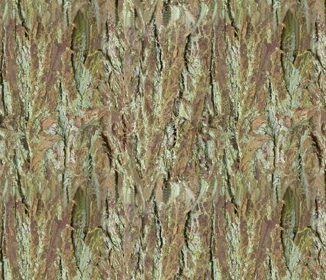 Bark fabric by koalalady on Spoonflower - custom fabric