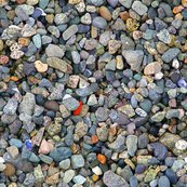 Rbeach_stones_colored__shop_thumb
