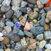 Beach_stones-colored_biggest_tif_shop_thumb