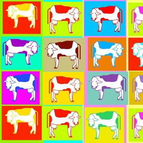 SOOBLOO_COWS__COWS__COWS-01