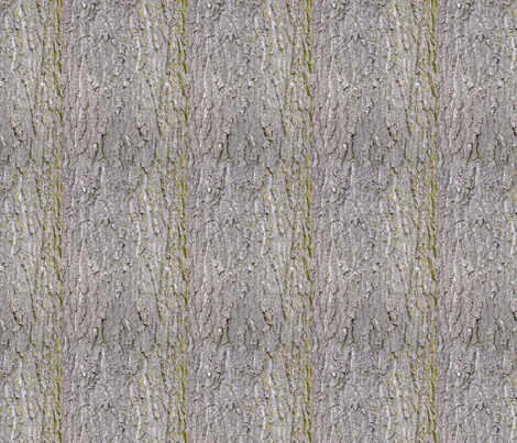 Scarlet Oak Bark  fabric by koalalady on Spoonflower - custom fabric