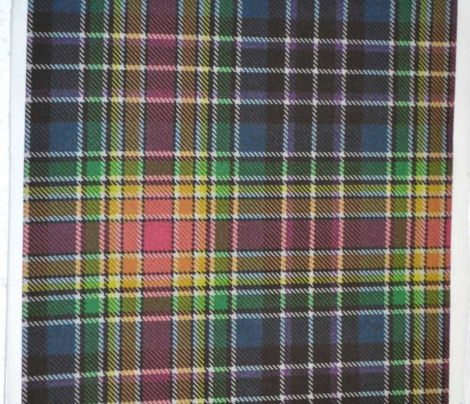 Rainbow Plaid 2