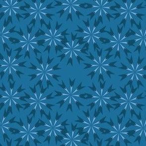 Chicory Dark Bloom