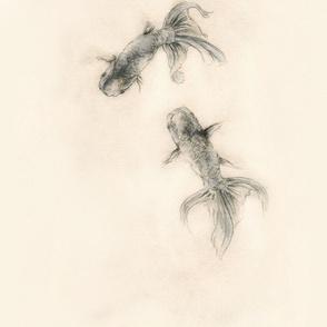 Lionhead Fancyfish