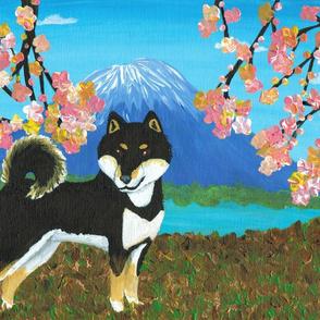 Sakura Shiba