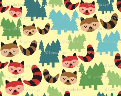 Forest Bandit Raccoons