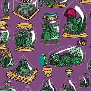 Gilded Terrariums