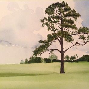 Kens Florida Tree