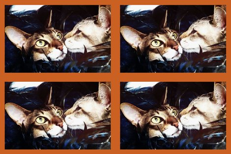 Rallans_cats_18x27_v3_shop_preview