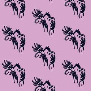 Blue Moose Purpleberry