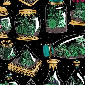 Gilded Terrariums + Stars