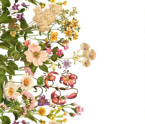 Botanical print Tea Towel fabric by melinda_wolf_designs on Spoonflower - custom fabric