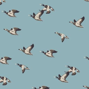 Flying Ducks in blue