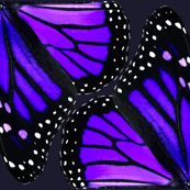 Purple Monarch Butterfly Wings