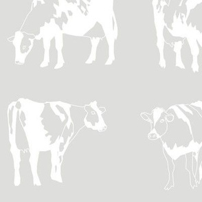 Dairy Cows Grey