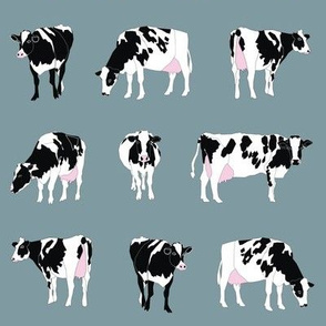 Dairy Cows on Bluegrey