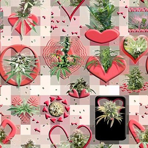Cannabis Valentine (R)