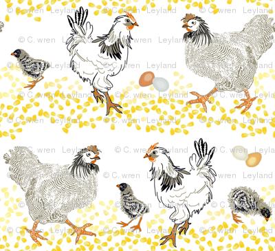 Chicken-n-Corn Rows