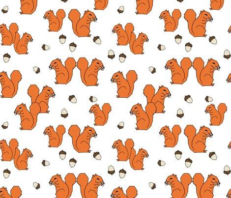 Rsquirrels_orange_white_shop_preview
