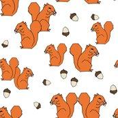 Rsquirrels_orange_white_shop_thumb
