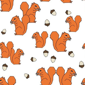 squirrels // squirrel orange fall autumn kids woodland forest animal
