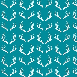 Deer horns in turquoise