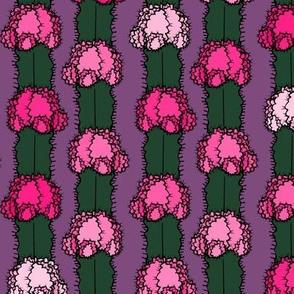 Cactus Stripe