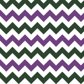 Purple and Green Chevron Stripes