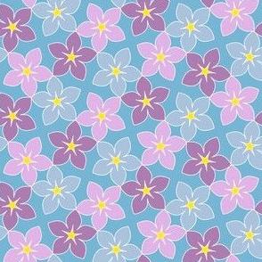 03245960 : S43 floral : summer blooms