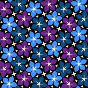 03246010 : S43 floral : starry bedtime bouquet