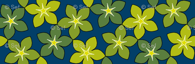 03246024 : S43 floral : twinkling in the undergrowth