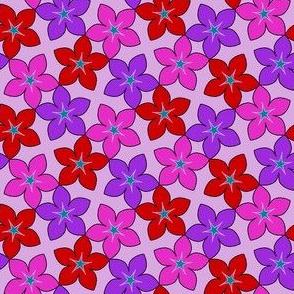 03246028 : S43 floral : crazy valentine