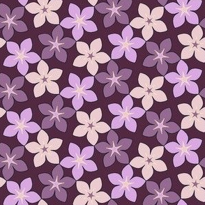 03246037 : S43 floral : scented twilight