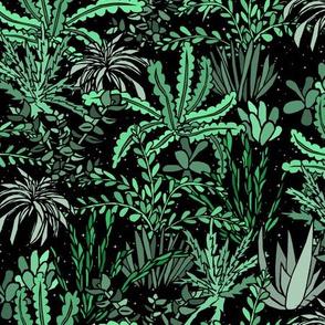 Succulent Jungle Night