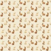 Bunnies in Vanilla