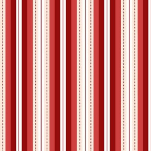 Elegant Red Dotted Stripe