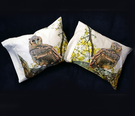 3 Verreaux owl pillowcase
