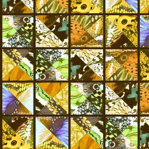 How_Butterflies_Accessorize_8_