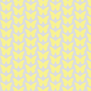 butterfly in light yellow and soft gray