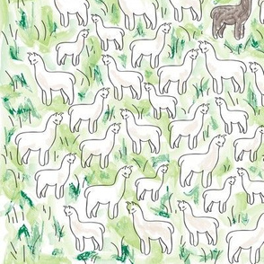 Alpaca Farm green