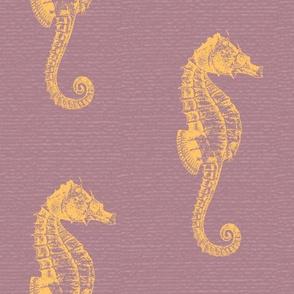 Seahorse lila