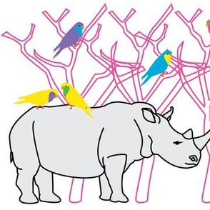 Rhino fantasy
