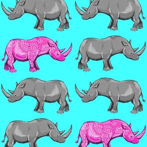 Rhinos on Aqua