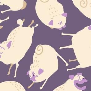 """Purple Pugs 4-6"""""""