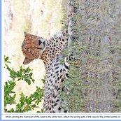 Cheeta_three_shop_thumb